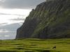dsc0376red,Færøerne