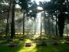 07,Holme Kirkegård, lysstråler